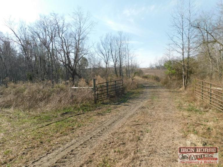 Auction Lot 2:  80.7+/-  Acres